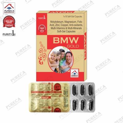BMW Gold Capsule